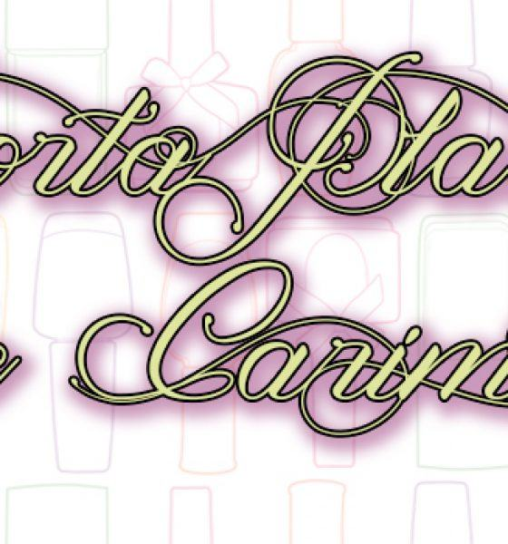 Born Pretty – Porta Placas de Carimbo