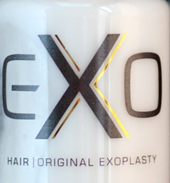 Exo Hair – Leave On Repair